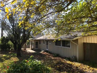 Oroville Single Family Home For Sale: 220 Pinedale Avenue