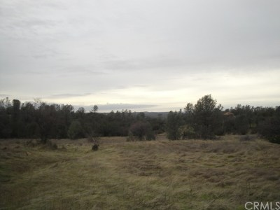 Oroville Residential Lots & Land For Sale: Skyline Boulevard