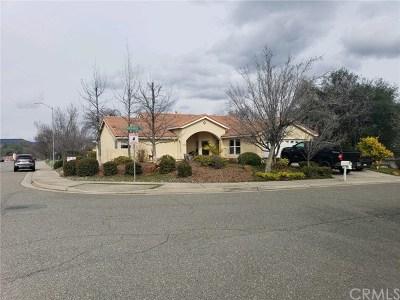 Oroville Single Family Home For Sale: 13 Moonridge Court