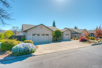 Oroville Single Family Home For Sale: 135 Lariat Loop