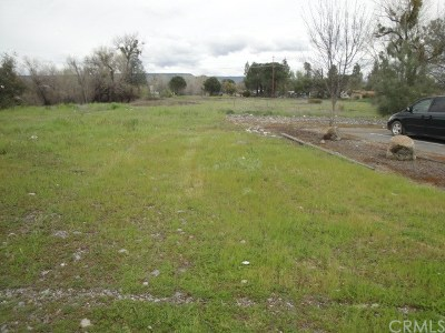 Commercial For Sale: Oro Dam