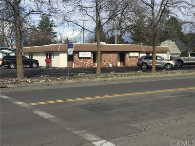 Butte County Commercial For Sale: 490 Sycamore Street