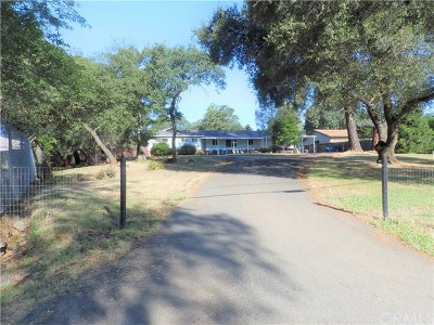 Oroville Single Family Home For Sale: 38 Meadowview Drive