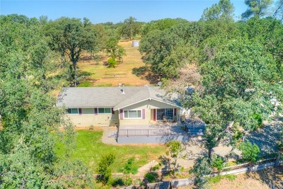 Oroville Single Family Home For Sale: 150 District Center