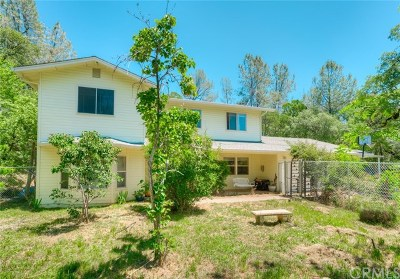 Oroville Single Family Home For Sale: 31 Spring Valley Court