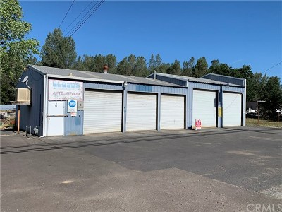 Oroville Commercial For Sale: 6896 Lincoln Boulevard