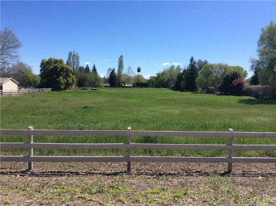 Chico Residential Lots & Land For Sale: Owens Road