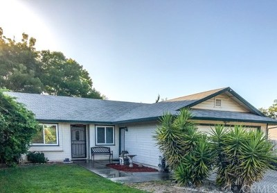 Oroville Single Family Home For Sale: 20 Coarse Gold Road
