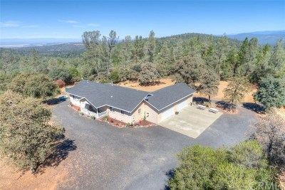 Oroville Single Family Home For Sale: 141 Eagle Vista Drive