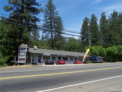 Butte County Commercial For Sale: 7967 Skyway