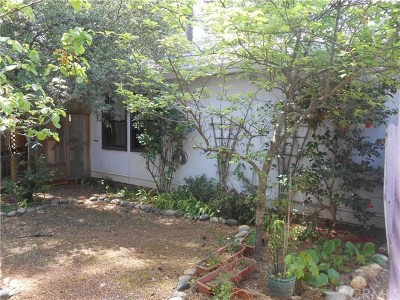Paradise Single Family Home For Sale: 8901 Skyway