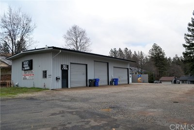 Paradise Commercial For Sale: 5836 Clark Road