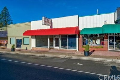 Butte County Commercial For Sale: 6133 Skyway
