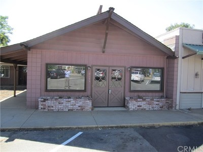 Paradise Commercial For Sale: 6137 Center Street