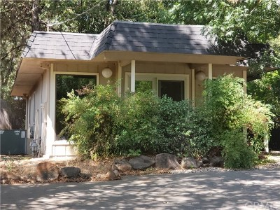 Butte County Commercial For Sale: 5581 Scottwood Road