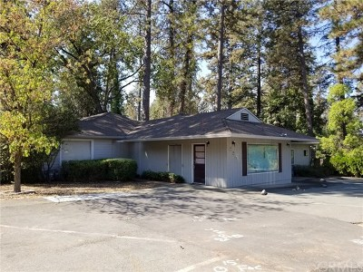 Paradise Commercial For Sale: 338 Pearson Road