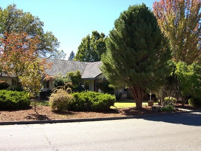 Paradise Single Family Home For Sale: 1944 York Towne Manor