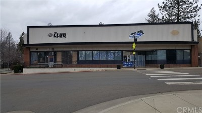 Butte County Commercial Lease For Lease: 6241 Skyway