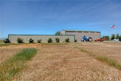 Corning Residential Lots & Land For Sale: 5955 Paskenta Rd.