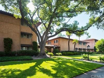 Pasadena Condo/Townhouse For Sale: 1200 S Orange Grove Boulevard #10