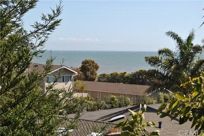 Pismo Beach Single Family Home For Sale: 113 Park Place