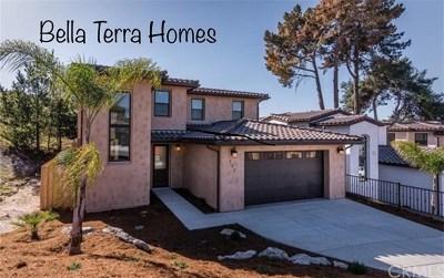 San Luis Obispo County Single Family Home For Sale: 132 Finnians Way
