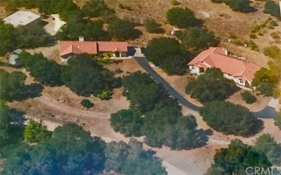 Arroyo Grande Single Family Home For Sale: 1046 Hetrick