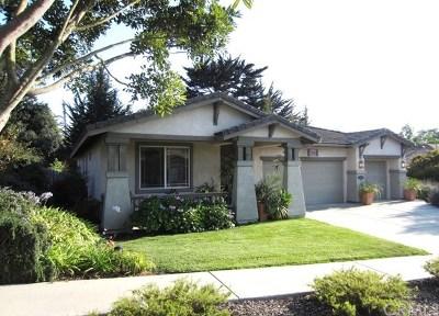 Arroyo Grande Single Family Home For Sale: 2233 Kittiwake Street