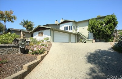 Arroyo Grande Single Family Home For Sale: 1039 Huasna Road