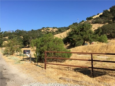 Santa Margarita, Templeton, Atascadero, Paso Robles Residential Lots & Land For Sale: 2035 Mountain Springs Road