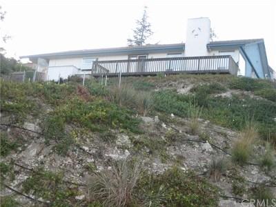 Arroyo Grande Single Family Home For Sale: 141 Tally Ho Road