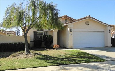Orcutt Single Family Home For Sale: 421 Playa Blanca Street