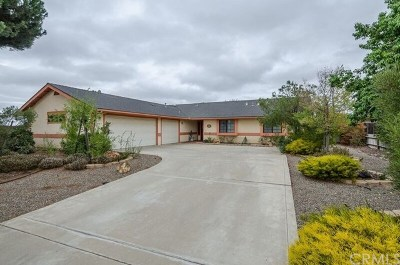 Orcutt Single Family Home For Sale: 1125 Country Hill Road