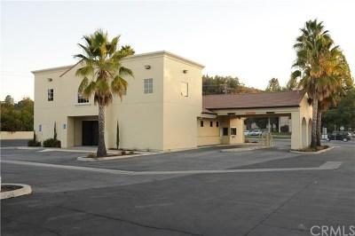San Luis Obispo County Commercial For Sale: 9990 El Camino Real