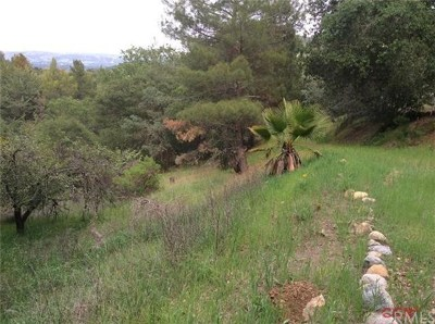 Atascadero Residential Lots & Land For Sale: 13410 Palo Verde