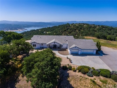 Paso Robles Single Family Home For Sale: 1011 Skylar Lane