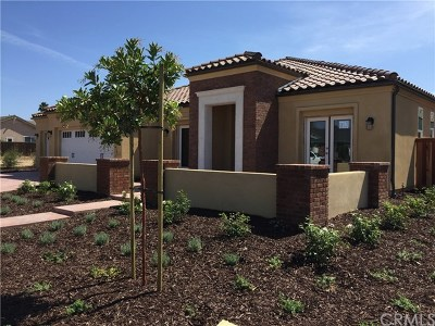 Orcutt Single Family Home For Sale: 1162 Old Mill Lane