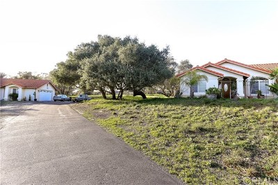 Arroyo Grande Single Family Home For Sale: 1046 Hetrick Avenue