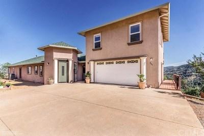 Chico Single Family Home For Sale: 235 Via De La Cruz Way