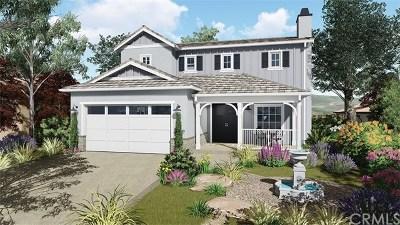 Orcutt Single Family Home For Sale: 1045 Shultz Lane