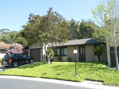 Arroyo Grande Condo/Townhouse For Sale: 1035 Meadow Way
