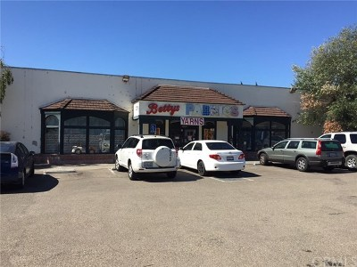 San Luis Obispo Commercial For Sale: 1229 Carmel Street