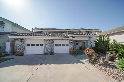 Pismo Beach Single Family Home For Sale: 370 Valley View Drive