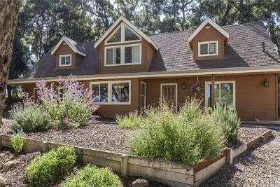 Santa Margarita, Templeton, Atascadero, Paso Robles Single Family Home For Sale: 1875 Santa Rita Road