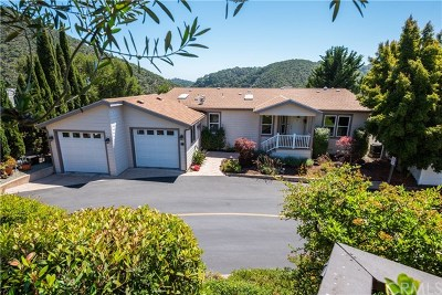 Avila Beach Single Family Home For Sale: 174 Village Crest
