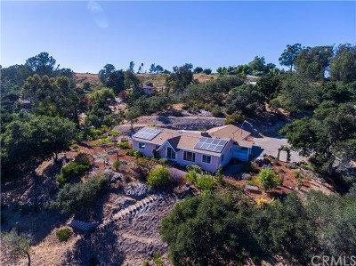 Arroyo Grande Single Family Home For Sale: 331 Quail Hill Lane
