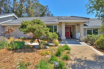 Arroyo Grande Single Family Home For Sale: 1484 Paloma Place