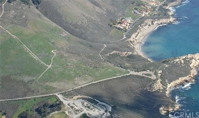 Avila Beach CA Residential Lots & Land For Sale: $1,990,000