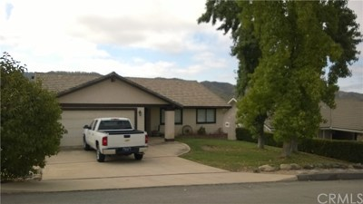 Paso Robles Single Family Home For Sale: 4773 Egret Lane