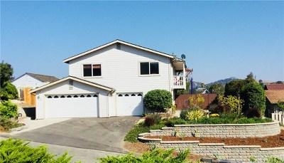 Arroyo Grande Single Family Home For Sale: 182 Colina Street